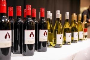 Weingut Zöchling Kochshow 1