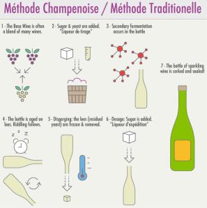Step by Step - Von der Traube zum Champagner.